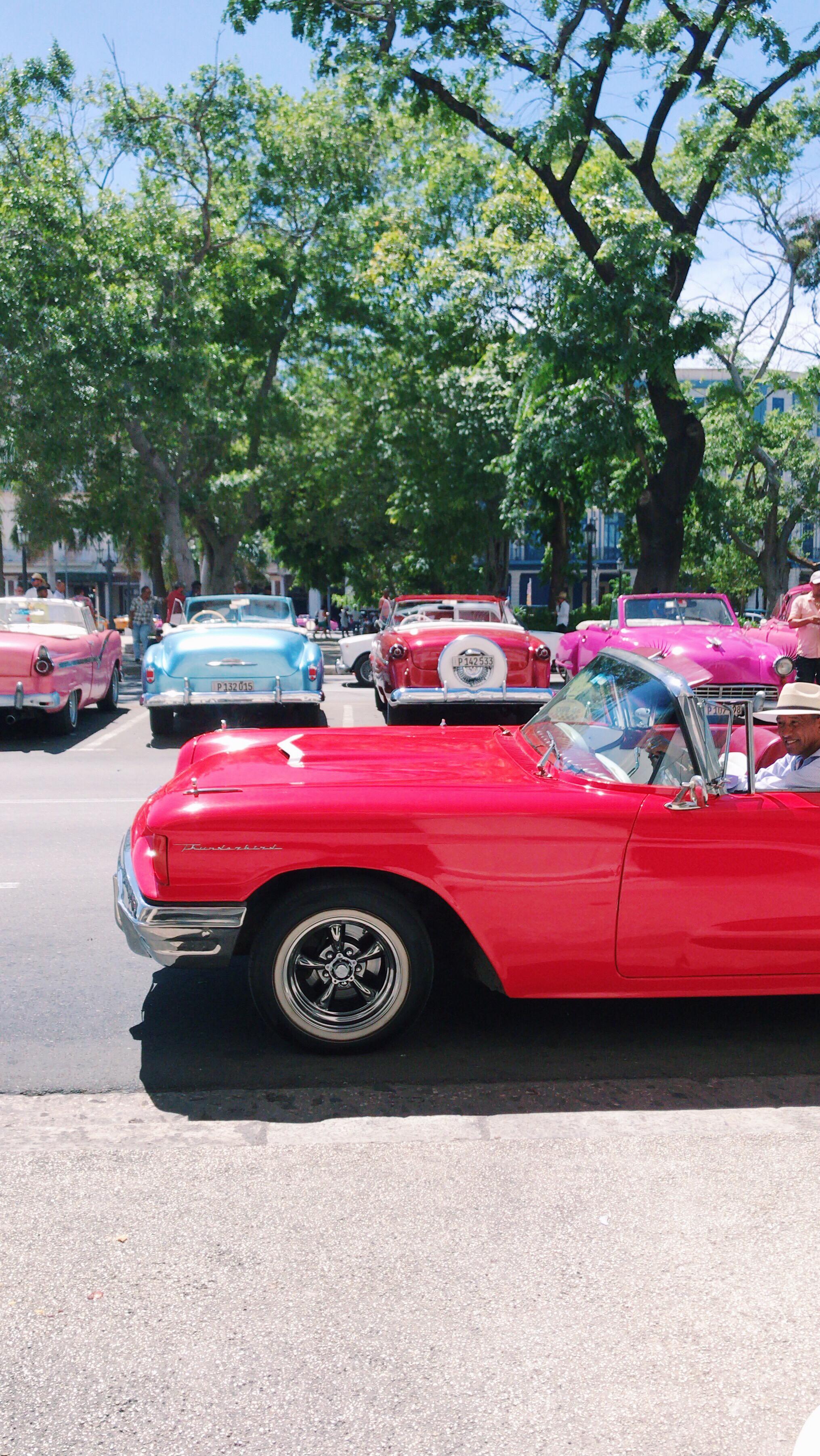 Beautiful Car in Havana, Cuba. HEBS talks about Cuba
